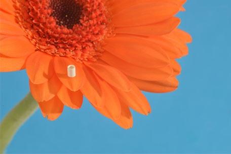 Innovative Mikrodichtungssätze für Laborausstattungen